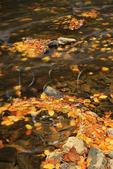 Riverbend Overlook, Linville River, Blue Ridge Parkway, Linville, North Carolina, USA