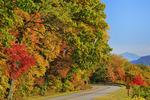 North of Balsum Gap, Blue Ridge Parkway, Grandfather Mountain, North Carolina, USA