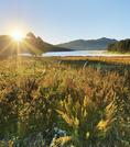 Sunrise, Sheridan Lake, Black Hills, Hill City, South Dakota, USA