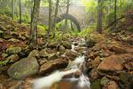Hemlock Bridge and Maple Springs Trail, Acadia National Park, Maine, USA