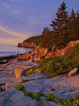 Otter Cliff at Sunrise, Acadia National Park, Maine, USA