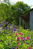 Garden, Merryspring Nature Center, Camden, Maine, USA
