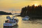 Sunset, Harbor, Port Clyde, Maine, USA