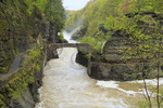 Gorge Trail crossing at Lower Falls, Genesee, River, Letchworth State Park, New York, USA