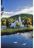 Swans behind church in Brattleboro, Vermont