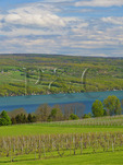 Glenora Wine Cellars, Finger Lakes, Dundee, New York, USA