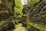 Gorge Trail, Watkins Glen State Park, Watkins Glen, New York, USA