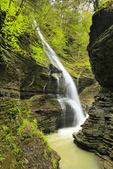 Rainbow Falls, Gorge Trail, Watkins Glen State Park, Watkins Glen, New York, USA