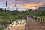 Towpath Trail Boardwallk, Beaver Marsh, Cuyahoga Valley National Park, Brecksville, Ohio, USA