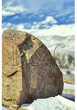 Petroglyphs, National Bighorn Sheep Center, DuBois, Wyoming