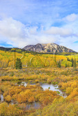 East Beckwith Mountain, Kebler Pass, Crested Butte, Colorado, USA