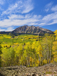 East Beckwith Mountain, Horse Ranch Park Loop Trail, Kebler Pass, Crested Butte, Colorado, USA