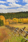 Peak to Peak Highway Near Ward, Colorado, USA