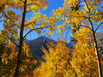 Bierstadt Lake Trail, Rocky Mountain National Park, Estes Park, Colorado, USA