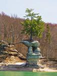 Flower Vase Formation, Pictured Rocks National Lakeshore, Munising, Michigan, USA
