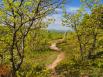 Escarpment Trail, Lake of the Clouds, Porcupine Mountains Wilderness State Park, Ontonagon, Michigan, USA
