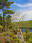 Escarpment Trail, Lake of the Clouds, Porcupine Mountains Wilderness State Park, Ontonagon, Michigan, USA