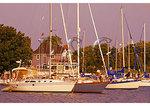 Harbor, Solomons Island, Maryland