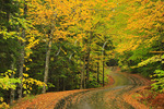 Echo Lake Access Road, Acadia National Park, Mount Desert Island, Maine, USA