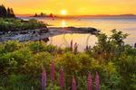 Pumpkin Island Lighthouse, Eggemoggin Reach, Deer Isle, Maine, USA
