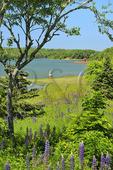 Sherm Perkins Memorial Park, Penobscot, Maine, USA