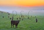 Sunrise, Swoope, Shenandoah Valley, Virginia, USA