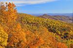 Ivy Creek Overlook, Appalachian Trail, Shenandoah National Park, Virginia, USA