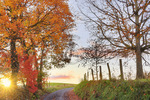 Country Road in Swoope, Shenandoah, Valley, Virginia, USA