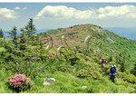 Hikers approaching Grassy Ridge Bald, Roan Mountain, Tennessee / North Carolina