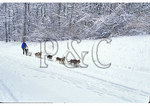 Dog sled on Parkway near Humpback Rocks, Blue Ridge Parkway, Virginia