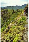 Hiker on Appalachian Trail, Charlie's Bunion, Great Smoky Mountains National Park, NC / TN State Line