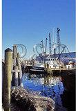 Harbor in Galilee, Rhode Island
