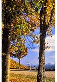 Appalachian Trail hikers stop at Ivy Creek Overlook, Shenandoah National Park, Virginia