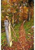 Appalachian Trail marker at Ivy Creek Overlook, Shenandoah National Park, Virginia