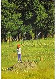 Girl watches Deer, Shenandoah National Park, Virginia