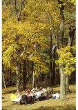 Family picnic at Elk Wallow, Shenandoah National Park, Virginia