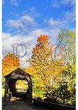 Covered Bridge, Grafton, Vermont