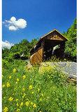 Indian Creek Covered Bridge, Union, West Virginia