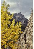 Cascade Canyon Trail, Grand Teton National Park, Wyoming