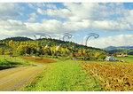 Country Road, Etlan, Madison County, Virginia