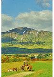 View of Old Rag Mountain, Etlan, Madison County, Virginia
