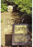 Site of Stonewall Jackson's wounding, Chancellorsville, Virginia