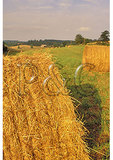 Hay Bales, Swoope, Shenandoah Valley, Virginia