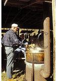 Making Apple Butter, Hot Springs, Virginia