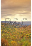 Beech Gap, Cherohala Skyway, North Carolina / Tennessee