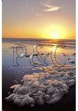 Sea Foam at Sunrise, Hunting Island State Park, Beaufort, South Carolina
