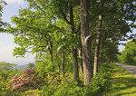 North of Buena Vista from Blue Ridge Parkway, Virginia