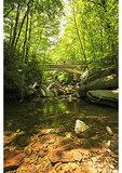Bridge of Boone Fork, Tanawha Trail, Blue Ridge Parkway, North Carolina
