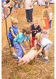 Greased Pig Contest, Churchville, Virginia