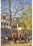 Carriage ride, Historic District, Colonial Williamsburg, Virginia